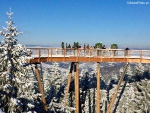 Szlak w koronach drzew - 24m nad ziemia