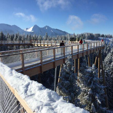 Bachledowa: Szlak w koronach drzew zimą